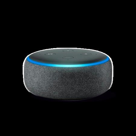 big-Alexa-sem-fundo